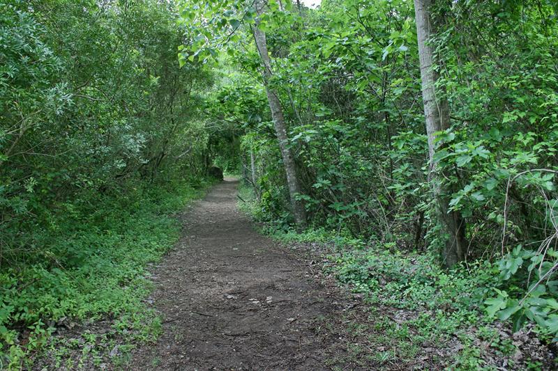 benamahoma ruta