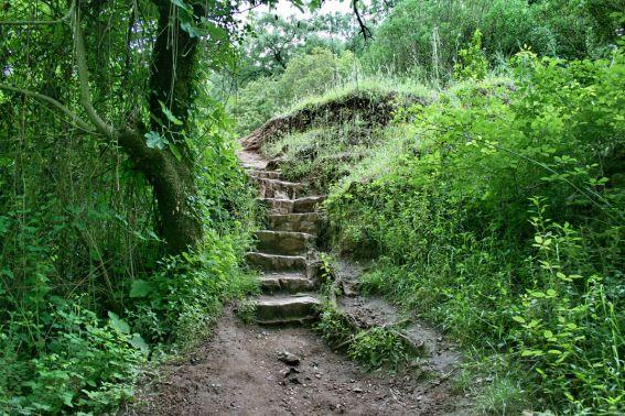 benamahoma-escaleras-en-el-rio-majaceite_222556